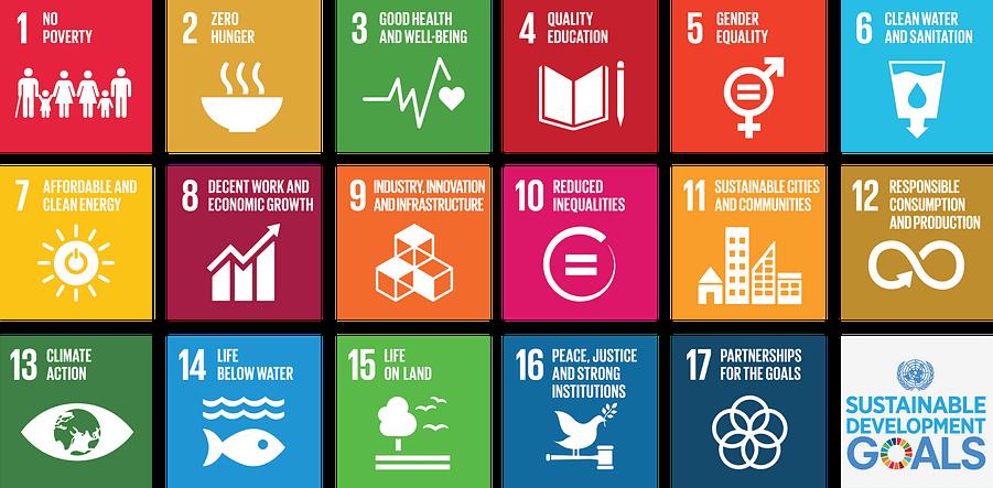 SDGs Visual